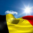 Belgian national flag under sunny sky — Stock Photo #48329995