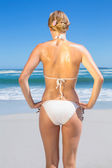 Woman in bikini on beach rear view — Stock Photo
