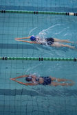 Female swimmers racing in pool — Stok fotoğraf