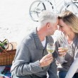 Couple enjoying wine on picnic at the beach — Stock Photo #48335251