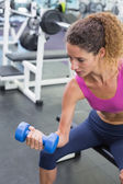 Woman lifting dumbbell sitting on bench — Stock Photo