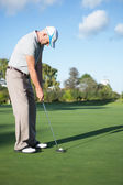 Handsome golfer putting ball on the green — Stok fotoğraf