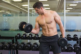 Bodybuilder lifting heavy dumbbells — Stok fotoğraf
