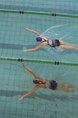 Female swimmers racing in pool — 图库照片