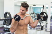 Focused bodybuilder lifting barbell weight — Stock Photo