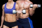 Bodybuilding couple posing with large dumbells — Stock Photo