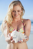 Blonde holding conch on beach — Stock Photo