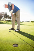 Golfer on the putting green watching hole — Stok fotoğraf
