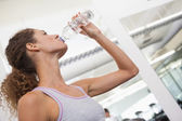 Fit woman drinking from water bottle — Stock Photo