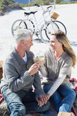 Couple enjoying wine on picnic at the beach — Stock Photo
