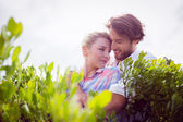 Couple embracing among bushes — Stok fotoğraf