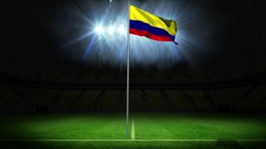 Colombia national flag waving on flagpole — Stock Video