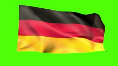 German national flag blowing — Stock Video