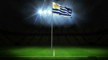 Uruguay national flag waving — Stock Video