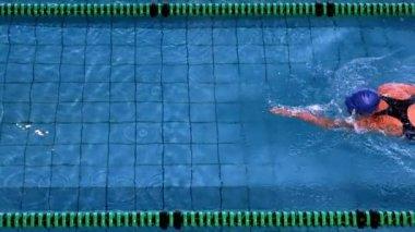 Fit female swimmer — Stock Video