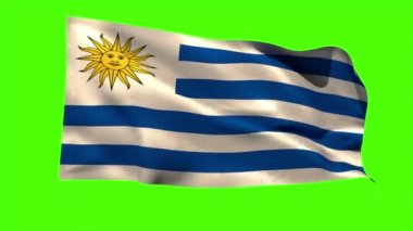 Uruguay national flag blowing — Vídeo de stock