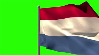 Netherlands national flag waving — Stock Video
