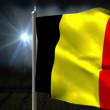 Belgien nationella flagga vajande — Stockvideo #48883659
