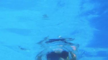 Low angle view of fit swimmer in pool — 图库视频影像