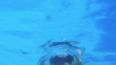 Low angle view of fit swimmer in pool — Vídeo de Stock