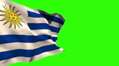 Uruguay national flag blowing — Stock Video