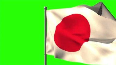 Japan national flag waving — Stock Video