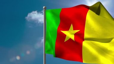 Cameroon national flag waving on flagpole — Stock Video