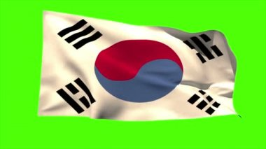 Korea republic national flag blowing — Stock Video