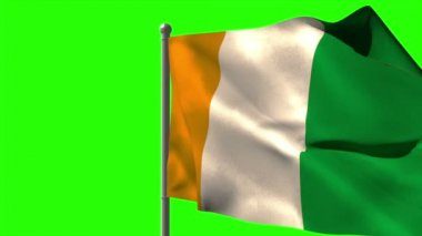 Ivory coast national flag waving — Vídeo Stock