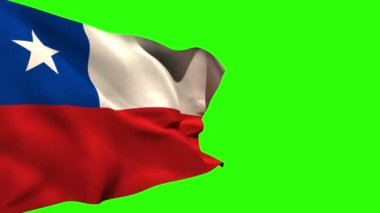 Large chile national flag blowing — Stock Video