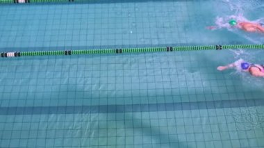 Fit swimmers racing in the pool — Stok video