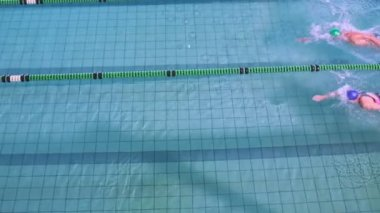 Fit swimmers racing in the pool — Wideo stockowe