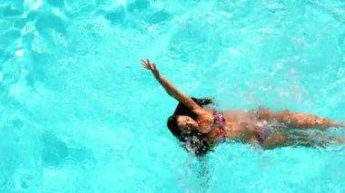 Brunette swimming across the pool — Stock Video