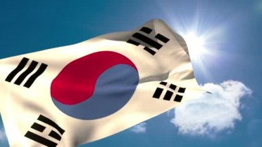 Korea republic national flag — Stock Video