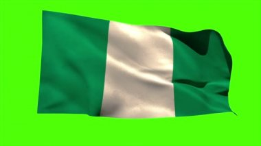 Nigeria national flag blowing — Stock Video