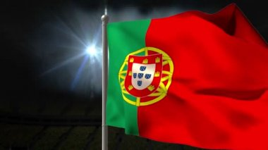 Portugal national flag waving — Stock Video