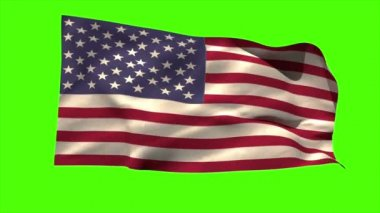 USA national flag blowing — Vídeo de stock