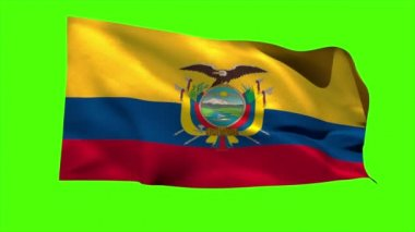 Ecuador national flag blowing — Stock Video