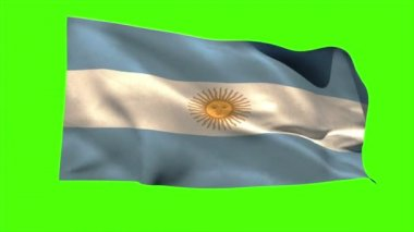Argentina national flag blowing — Vídeo de stock