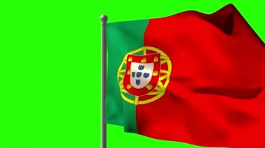 Portugal national flag waving — Vídeo de stock
