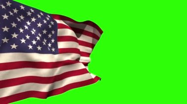 Large usa national flag blowing — Video Stock