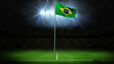 Brazil national flag waving on flagpole — Stock Video