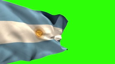 Large argentina national flag blowing — Stock Video