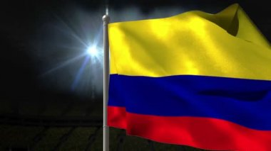Colombia national flag waving — Stock Video