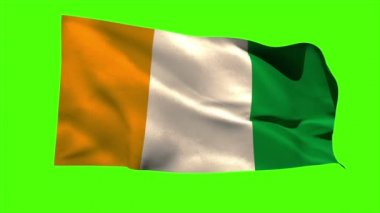 Ivory coast national flag blowing — Video Stock