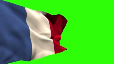 Large france national flag blowing — Stock Video