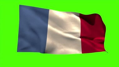 France national flag blowing — Stock Video