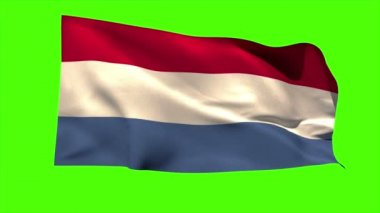 Netherlands national flag blowing — Stock Video