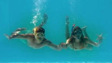 Couple wearing snorkels holding starfish underwater — Vídeo de stock