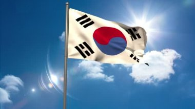 Korea republic national flag waving on flagpole — Stock Video